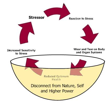 natural-stress-management-diagram